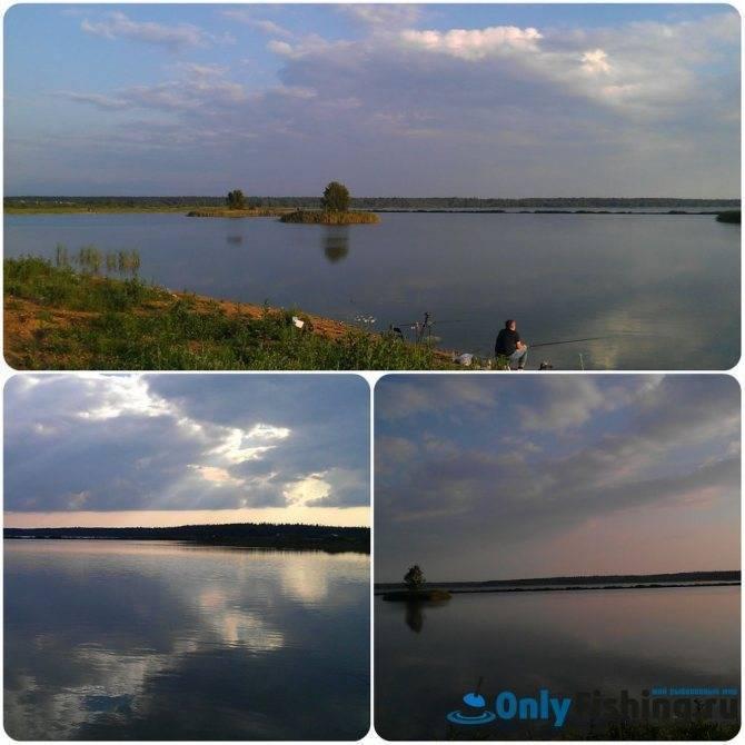 Рыбалка в раково московской области: отчет, отзывы