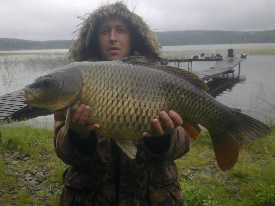 Рыбалка в челябинской области: водоемы платные и бесплатные