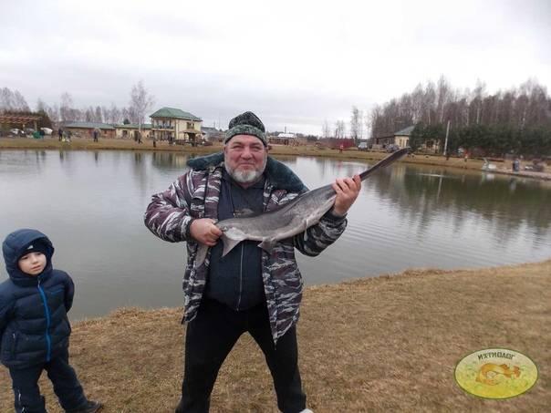 Ихтиолог – платная рыбалка в лотошино