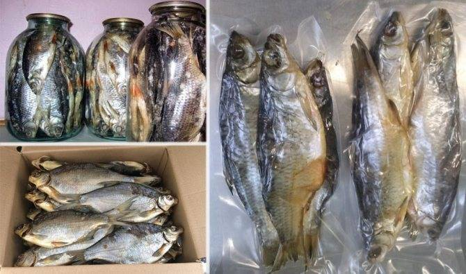 Как правильно хранить рыбу в свежем, соленом и копченом виде?