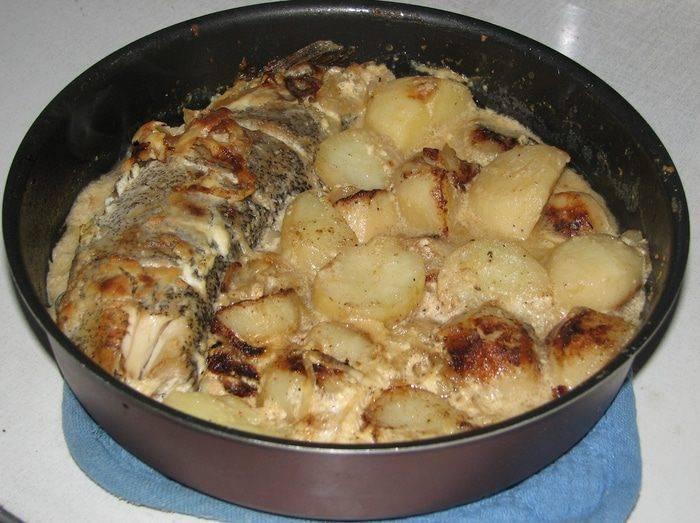 Как приготовить щуку на сковороде, в духовке или на мангале - простые и вкусные блюда с видео