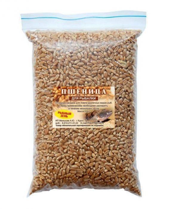 Как запарить пшеницу для рыбалки - способы приготовления