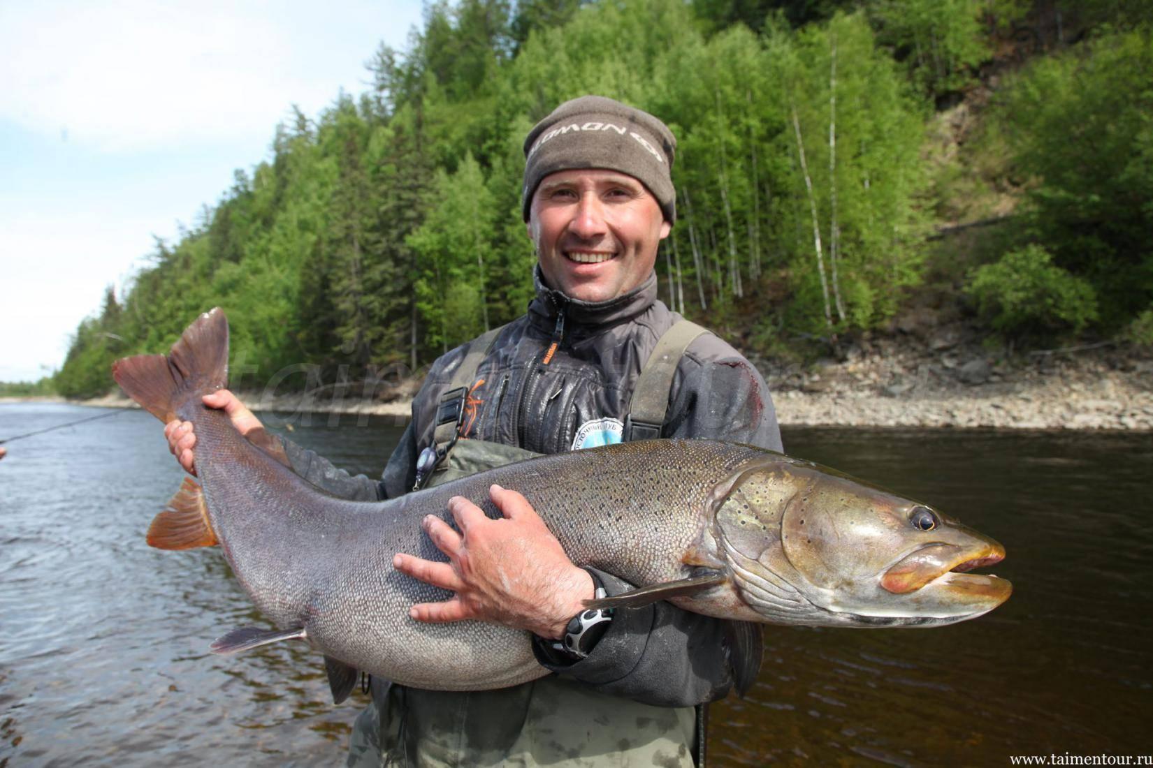 Много рыбы на малых реках: перспектива ловли на небольших лесных и таёжных речках