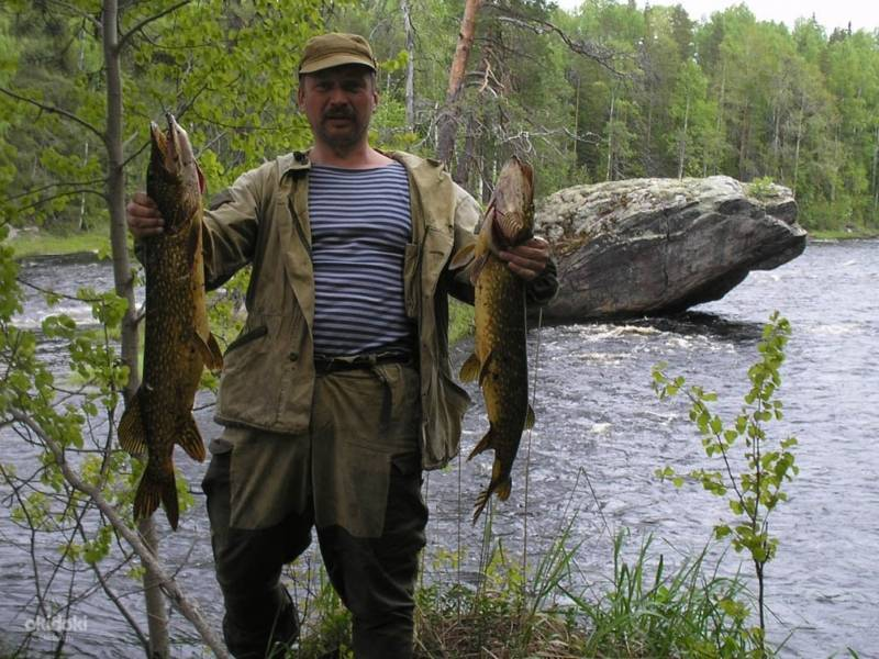 Рыбалка на реке мста новгородской области