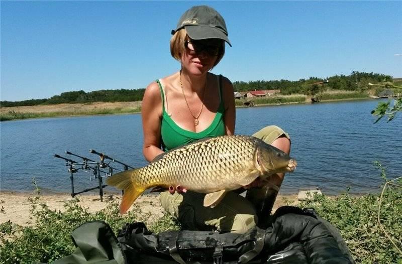 12 лучших рыболовных мест ростовской области