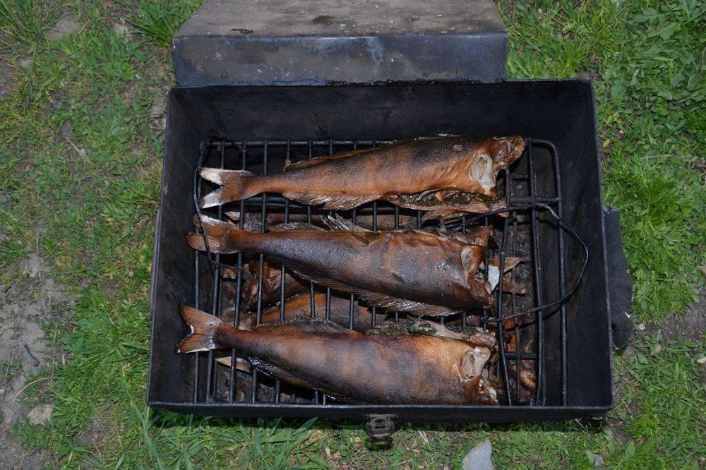 Как засолить рыбу для копчения: подготовка к засолке в коптильне, способы замачивать