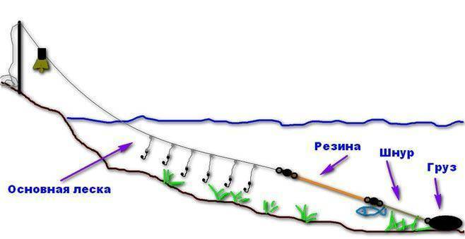 Донка на судака, выбор и монтаж снасти, особенности ловли