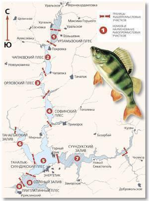 Как выбрать место для рыбалки – полезные советы