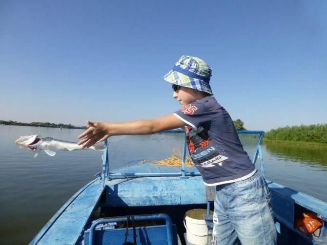 Рыболовно-охотничья база «волжская» енотаевский район, в астраханской области - цены 2021, фото, отзывы