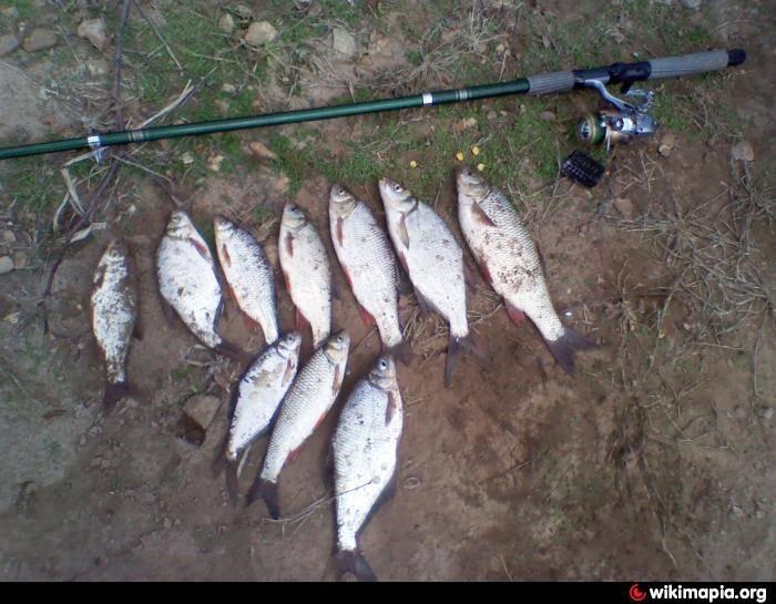 Рыбалка в башкирии: по месяцам, какая рыба водится, отзывы