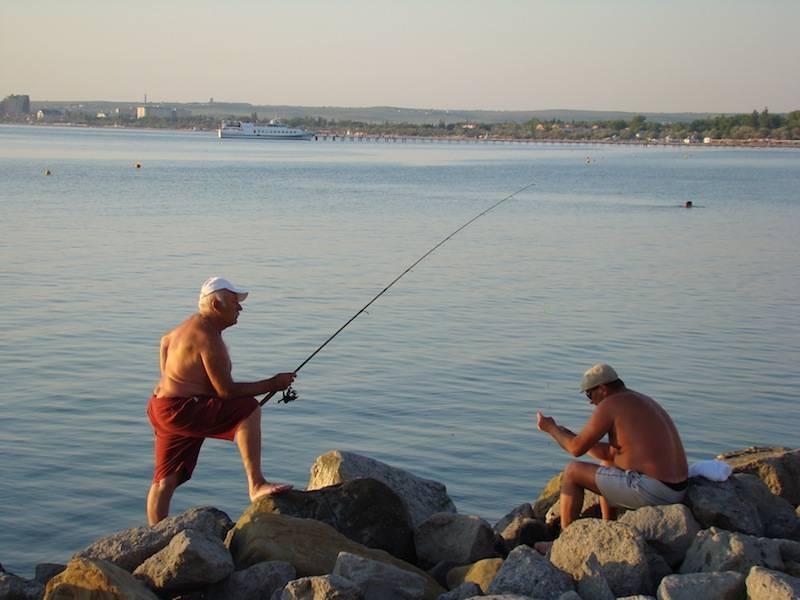 Какую рыбу можно поймать в чёрном море в районе анапы?