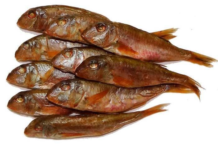Рыба барабулька. рыба барабулька: фото, отзывы, как выглядит, где водится, как приготовить