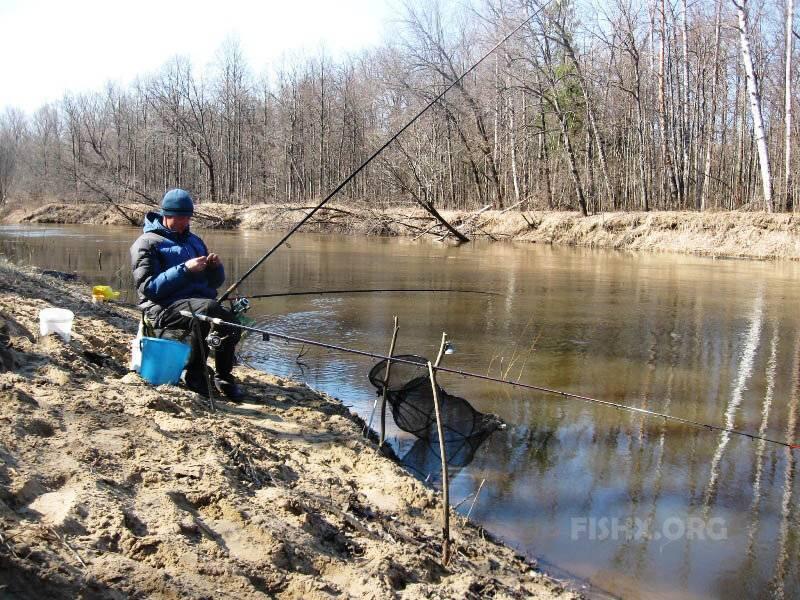 Как ловить карася весной на фидер и подготовиться к рыбалке как ловить карася весной на фидер и подготовиться к рыбалке