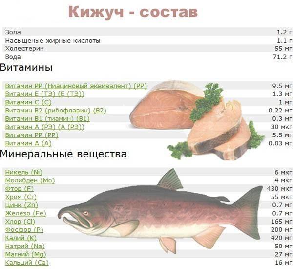 Горбуша – состав и калорийность рыбы, польза и вред