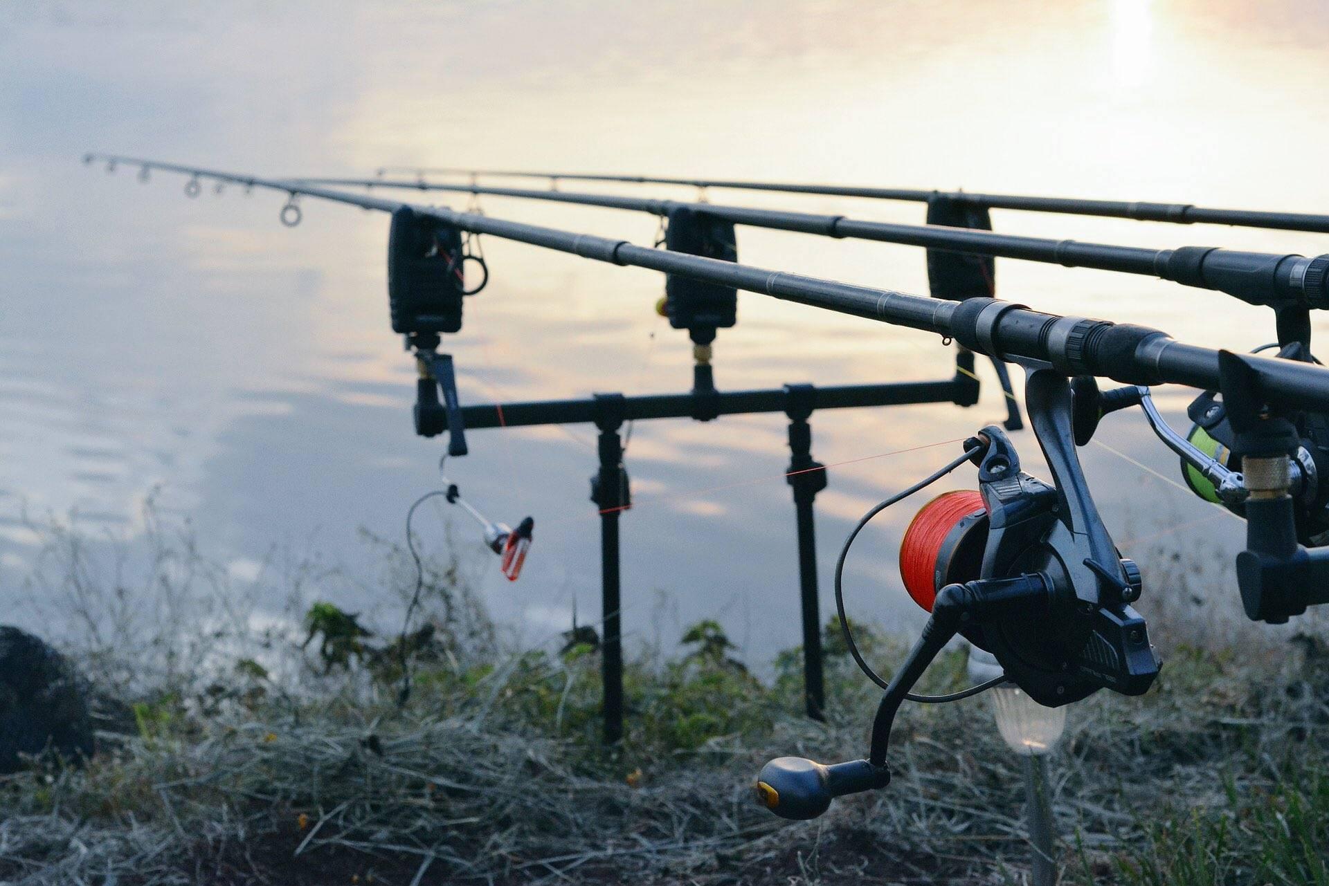 Ночная ловля фидером: как выбрать сигнализатор поклевки