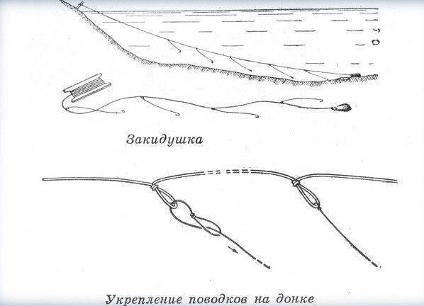 Ловля сома на донку (26 фото): выбор донной снасти, ловля с берега и лодки. как сделать закидушку? монтаж донки и выбор приманки