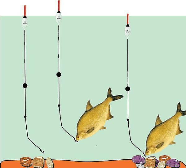 Ловля красноперки на спиннинг: снасть, наживка и техника