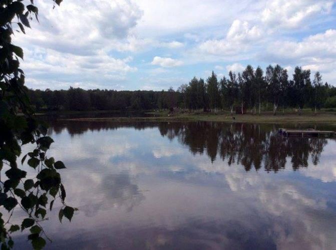 Васькино чеховский район рыбалка