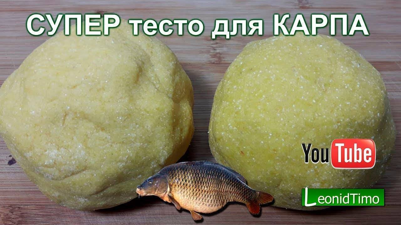 Рыбалка на тесто: как готовить для наживки и прикормки