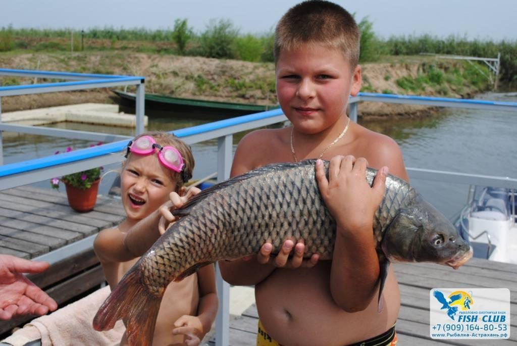Рыболовно-охотничья база «волжская»