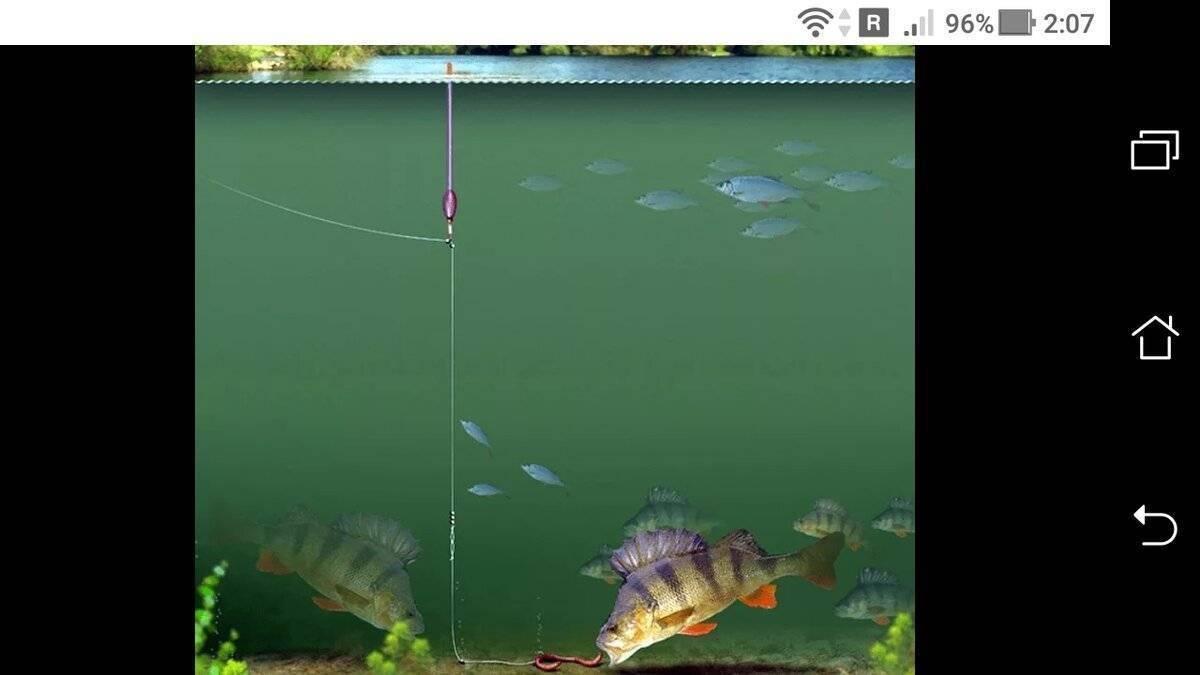 Рыбалка на поплавочную удочку: специфика оснастки, виды поплавков, способы ловли
