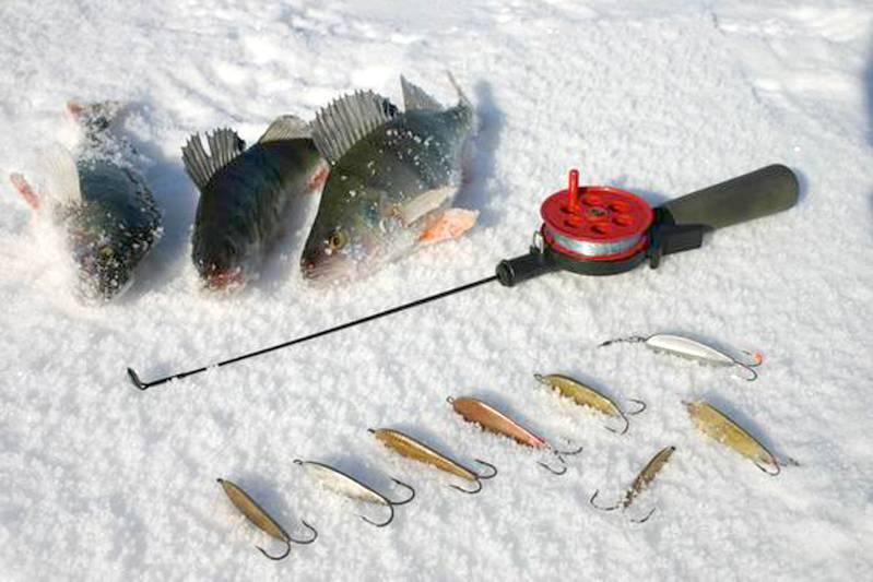 12 лучших зимних блёсен на окуня и техника ловли на них 12 лучших зимних блёсен на окуня и техника ловли на них