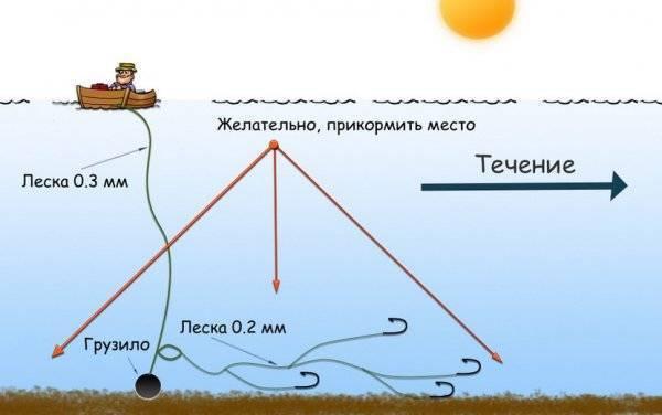 Ловля рыбы на снасть «кольцо»