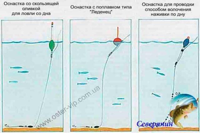 Оснастка для ловли форели на поплавок - рыбачок!сайт рыбачок