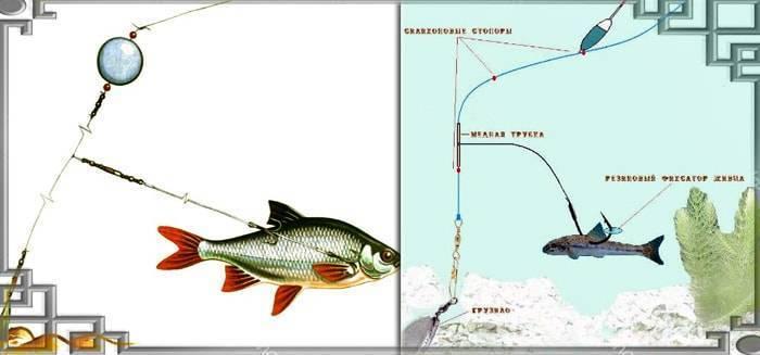 Снасти для ловли щуки: ловля на спиннинг, донной снастью, на поплавочную удочку на живца