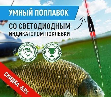 Платной рыбалке сказали «давай, до свидания» - парламентская газета