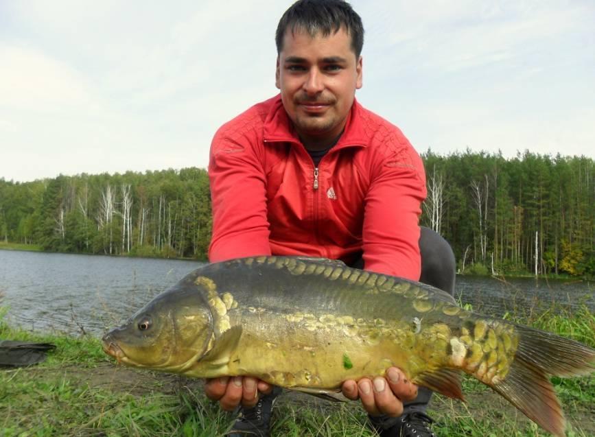 Рыбалка в ульяновской области: платная и бесплатная