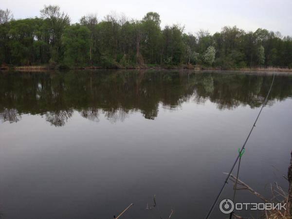 Рыбалка в пензенской области на суре и колдаисе