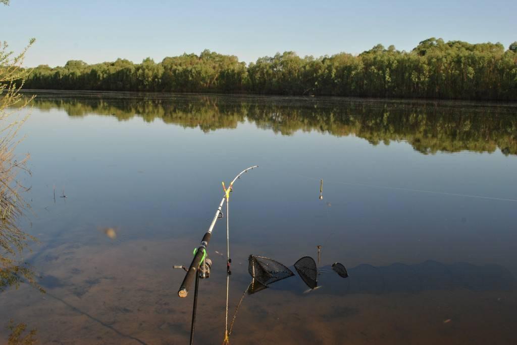 Клепиковские озёра, рязанская область. рыбалка, озеро белое. отели рядом, фото, видео, как добраться — туристер. ру