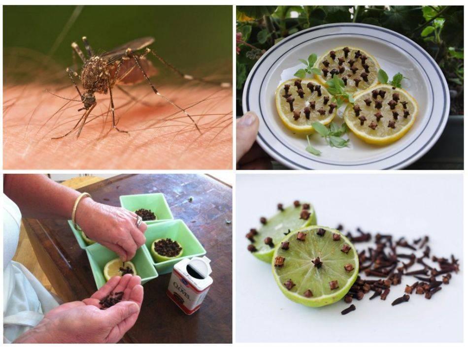 Натуральные репелленты от комаров
