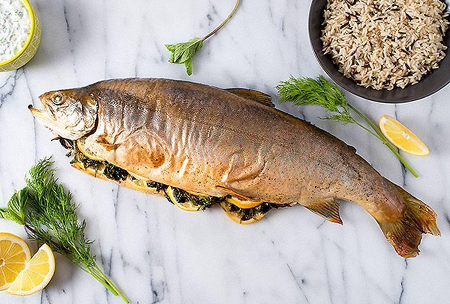Рыба голец польза и вред где водится