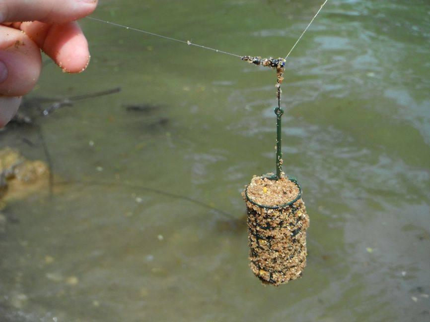 Ловля карпа на фидер - делаем оснастку, рыбалка весной и летом на пруду (видео)
