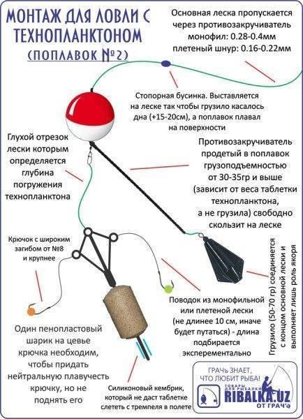 Рецепты изготовления технопланктона в домашних условиях