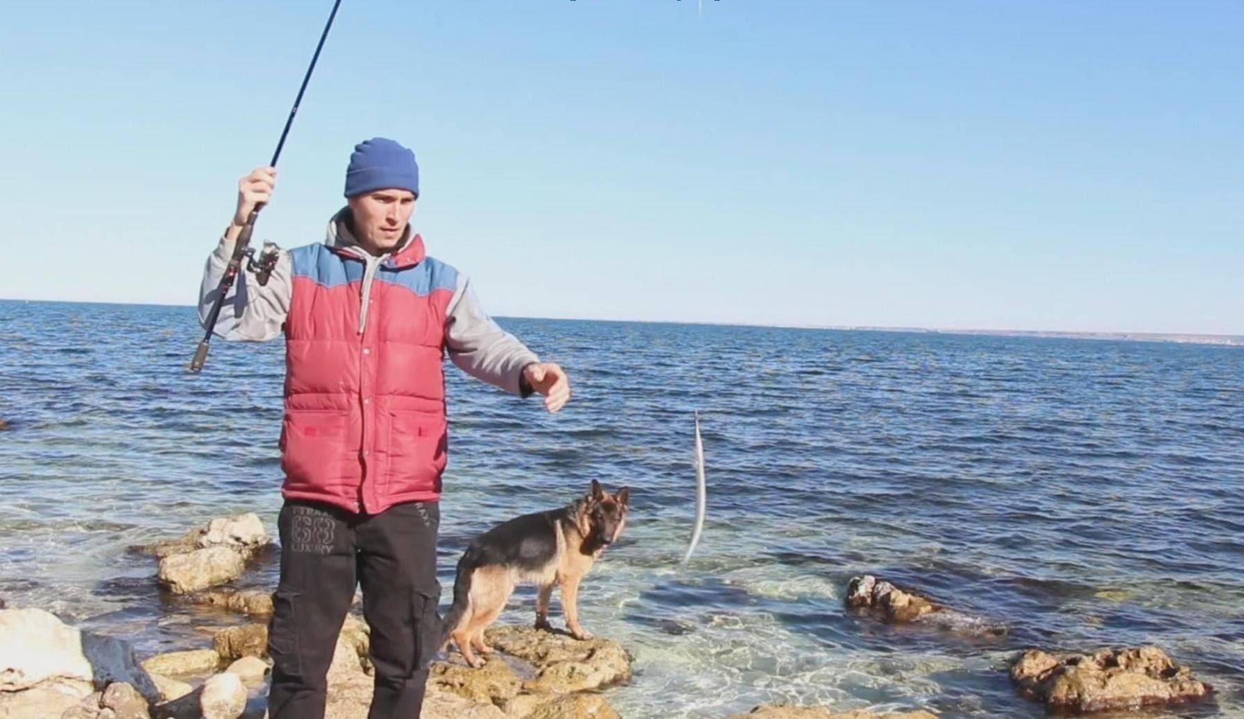 Ловля саргана в черном море: морская рыбалка со вкусом