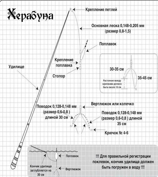 Как поймать карася. херабуна в россии - спортивное рыболовство
