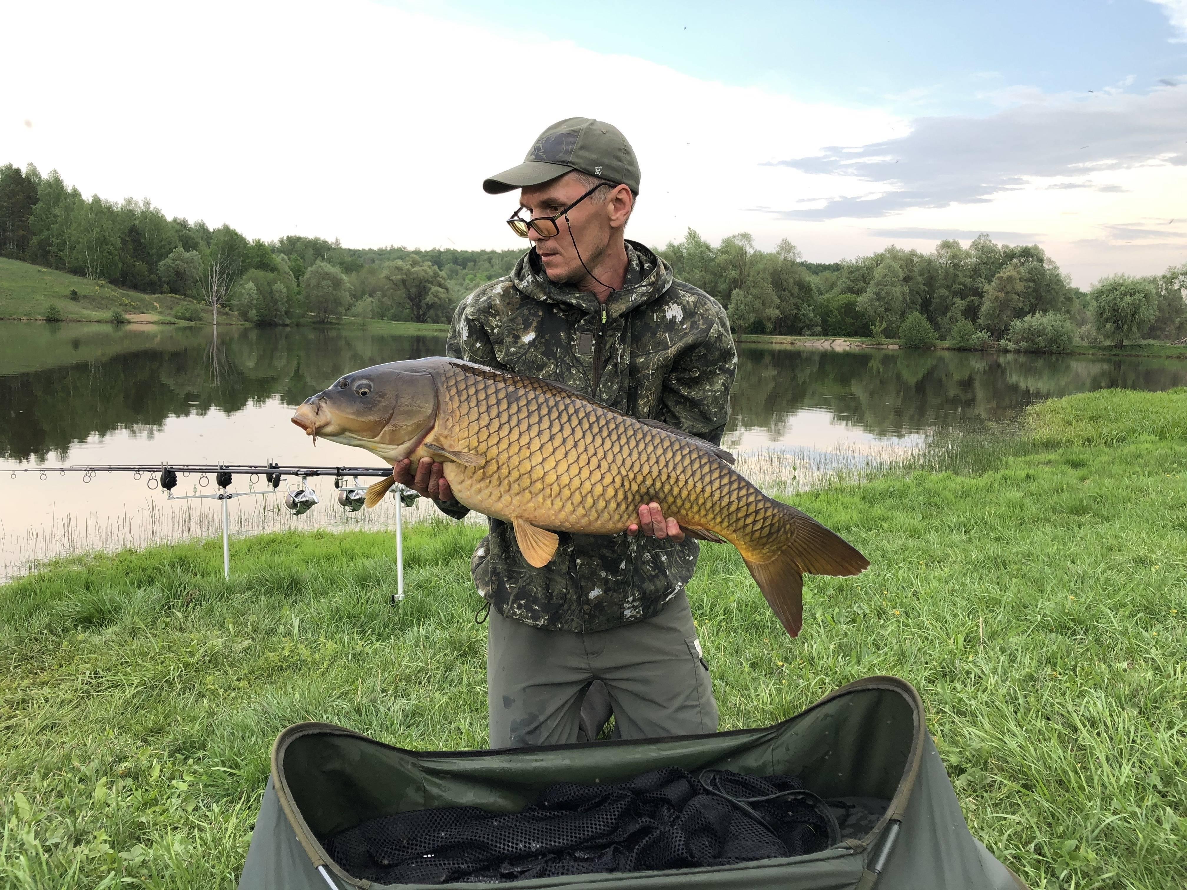 Ульяновск - календарь рыболова. рыбалка в ульяновске, график клёва рыбы.