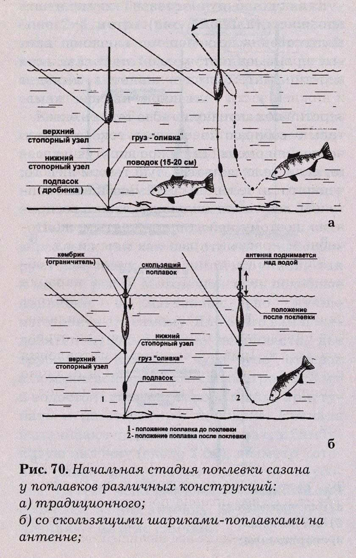 Как правильно сделать своими руками поплавочную удочку для ловли карпа с берега; подбор наживки и прикормки