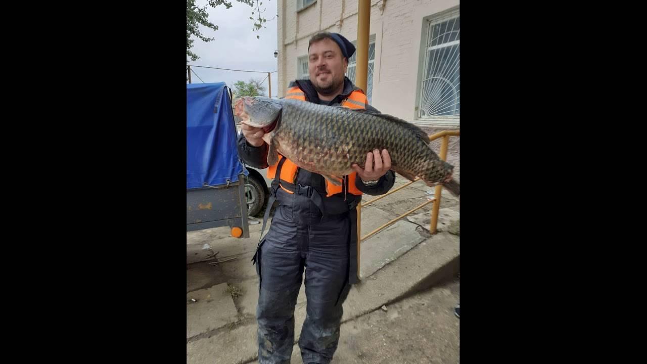 Рыбалка на волге в астраханской области