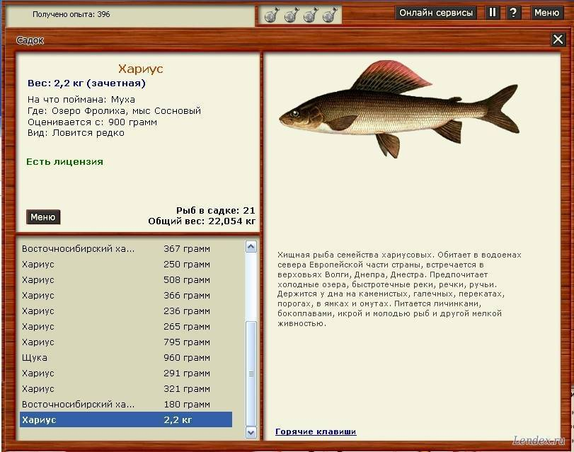 Пруды белгородской области для платной и бесплатной рыбалки