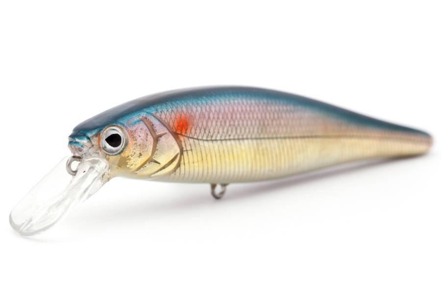 Рыба пыжьян описание и фото
