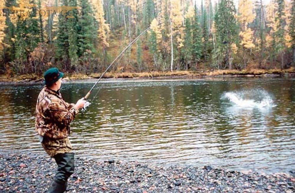 Ленок - где найти его, как и при помощи чего его эффективно ловить