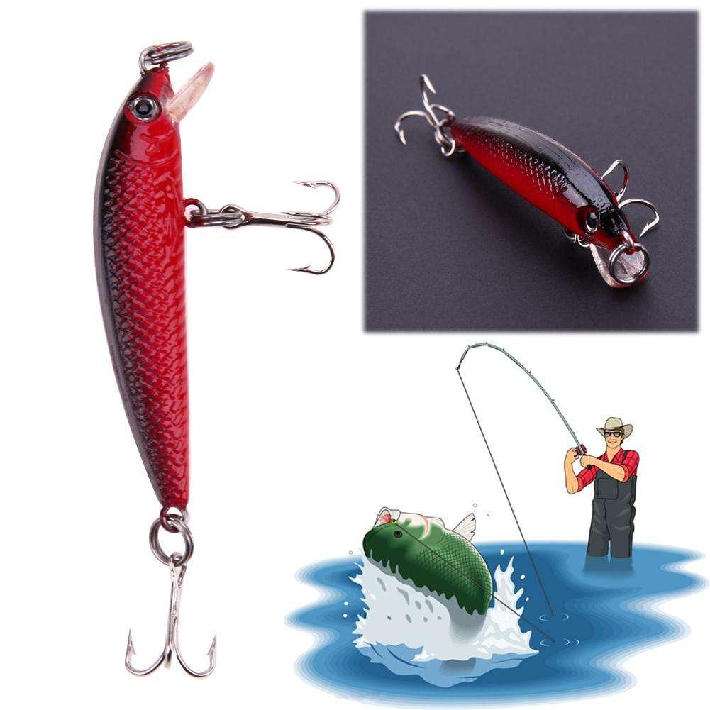 Приманка для рыб. рыболовные хитрости :: syl.ru