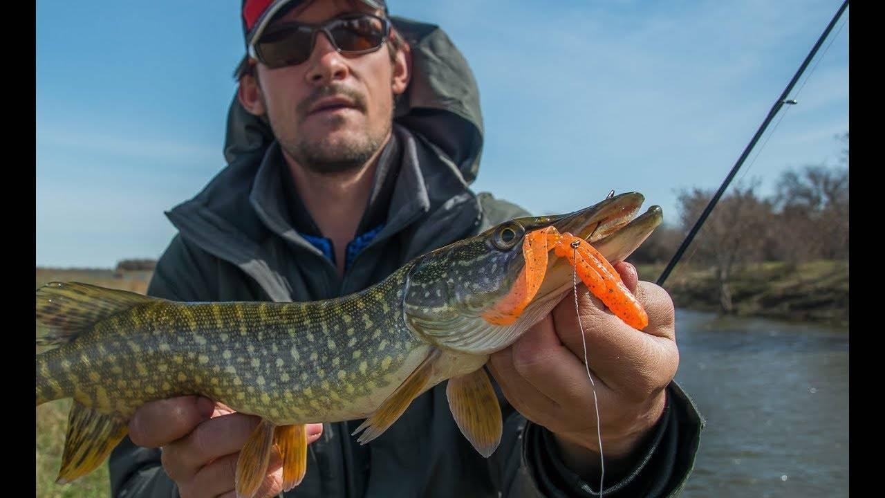 Ловля щуки весной на спиннинг с берега – рыбалке.нет