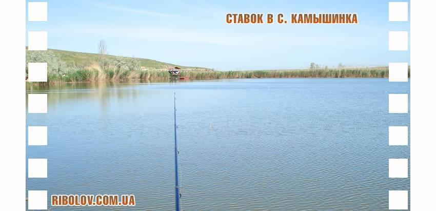 Рыбалка в крыму: где порыбачить и что можно поймать