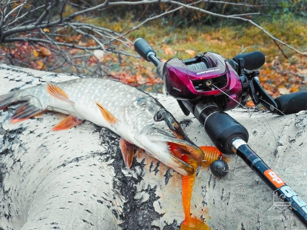 Как выбрать спиннинг на щуку в зависимости от условий ловли