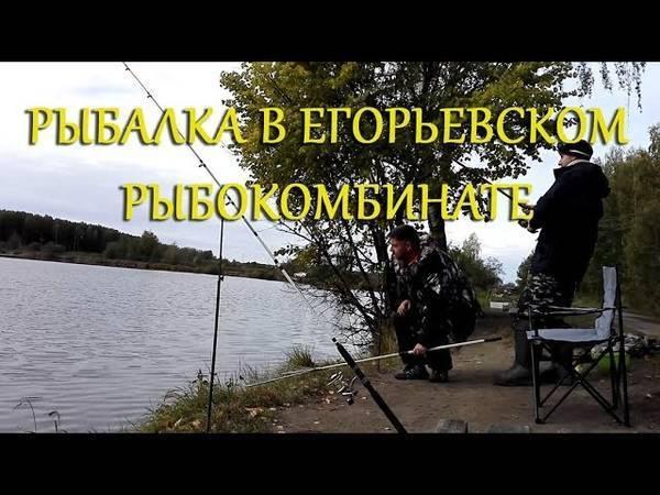 """Ао """"егорьевский рыбокомбинат """"цна"""""""